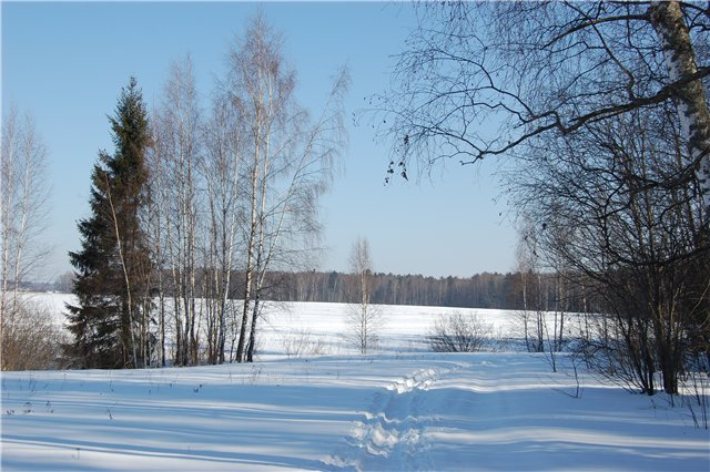 kazaki-na-trenirovke (2)