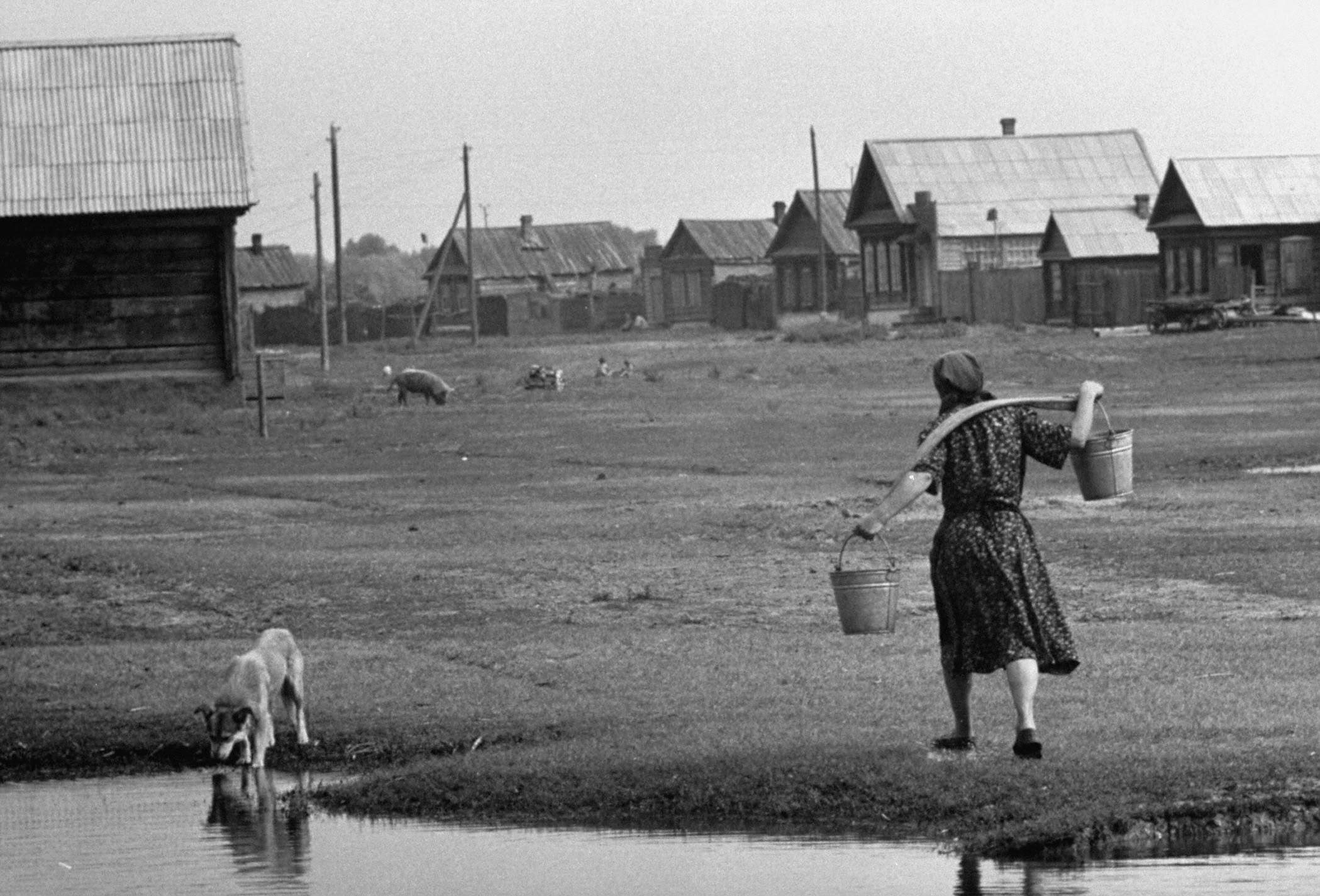Замьяновская 1958